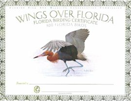Wings Over Florida